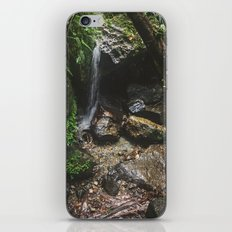 Deep into the Rainforest iPhone & iPod Skin
