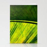 banana leaf Stationery Cards featuring Banana leaf by helsch photography