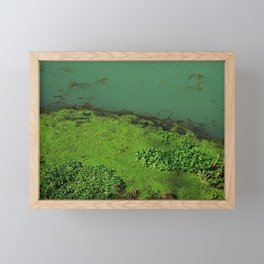 Borderline Landlife - where water and land meet with strong greens Framed Mini Art Print