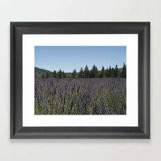 Lavender Field in the Woods Framed Art Print