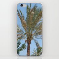 palm trees iPhone & iPod Skins featuring Palm Trees by MehrFarbeimLeben