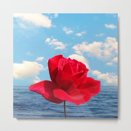 water rose Metal Print