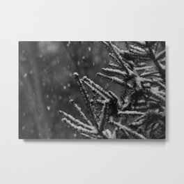 The Evergreen with Snow (Black and White) Metal Print