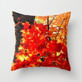 Fiery Autumn Throw Pillow