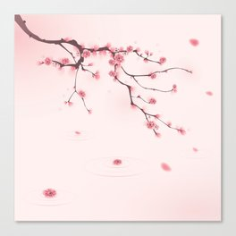 Oriental cherry blossom in spring 002 Canvas Print