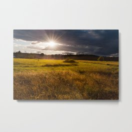 Breathtaking sunset above meadow Metal Print