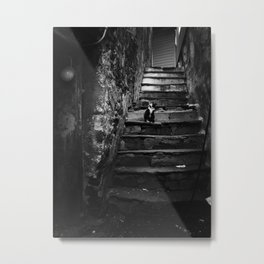 Cat alley Metal Print