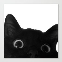 Here's lookin' at mew Canvas Print