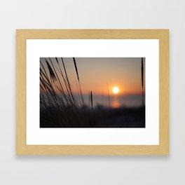 Comporta Framed Art Print