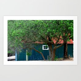 Old Boat Shed Art Print