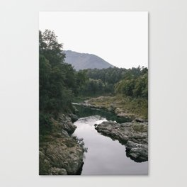 Murky Water Canvas Print
