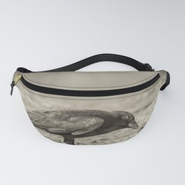 Curious Crow Fanny Pack