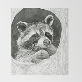 Raccoon In A Hollow Tree Drawing Throw Blanket