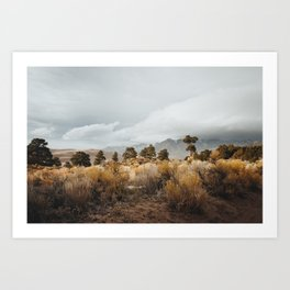 Great Sand Dunes National Park Art Print