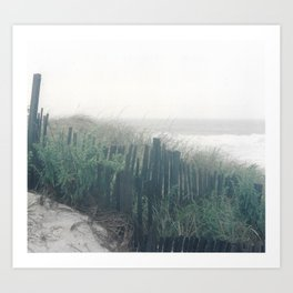 in the dunes. Art Print