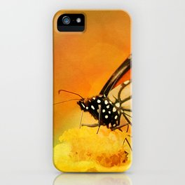 Monarch of Spring iPhone Case