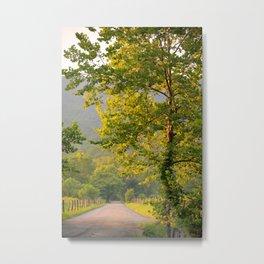 Cades Cove Road 3 Metal Print
