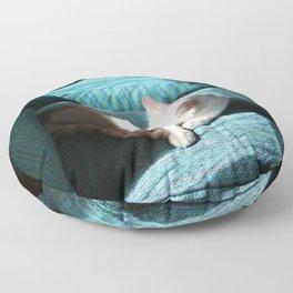 Cat In The Sun Floor Pillow