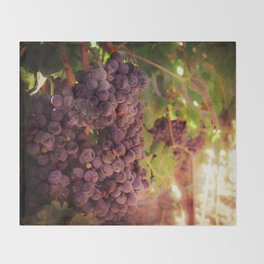 Vineyard Vines Throw Blanket