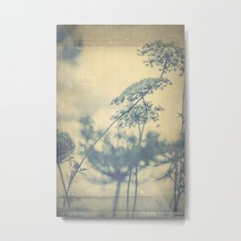 Chinoiserie -- Timeless with Queen Anne's Lace in Blue and Cream Vintage Duotone Metal Print