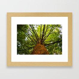 Ethereal Climb Framed Art Print