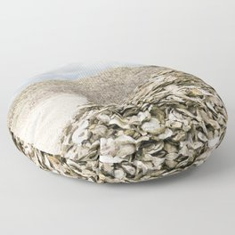 Oyster Shell Mounds, Seafood Fishing Industry, Washington, Northwest Floor Pillow