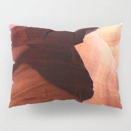 Natures Wonderful Sculpture Pillow Sham