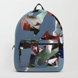 Splash no.6 Backpack