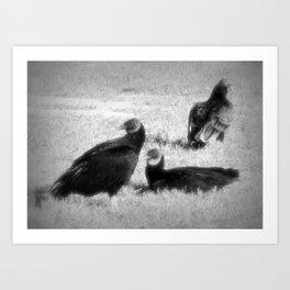 Three Vultures Art Print