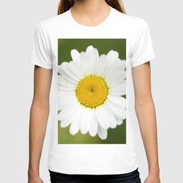 Beautiful Daisy Natural Green Background #decor #society6 #buyart T-shirt