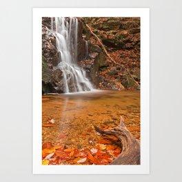 Avalon Hook Falls Art Print