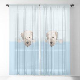 peeking pup. Sheer Curtain