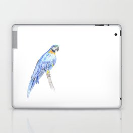 Blue Pappagallo Laptop & iPad Skin