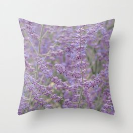 Lavender Field in Brussels Belgium Throw Pillow