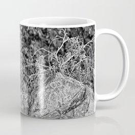 Strangler fig and boulder in the rain forest Coffee Mug