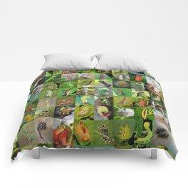 Caterpillar Montage Comforters