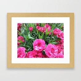Pink cloves Framed Art Print