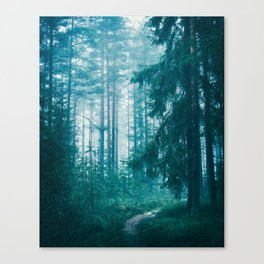 Peer Through The Trees Canvas Print