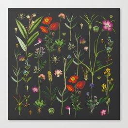 Exquisite Botanical Canvas Print
