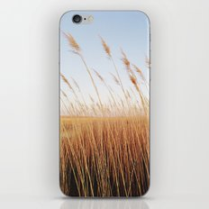 Refuge Sunset iPhone & iPod Skin