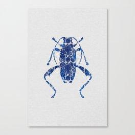 Blue Beetle IV Canvas Print