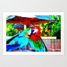 Fighting Parrots Art Print