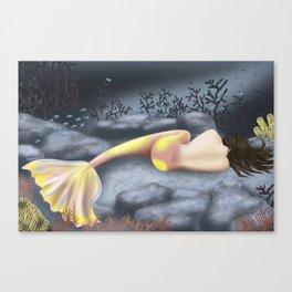 Sleeping Mermaid Canvas Print
