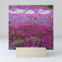 Waves of color on a sea of Petunias Mini Art Print