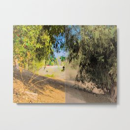 a walk into trees || collage Metal Print