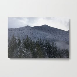 Pacific North West Metal Print