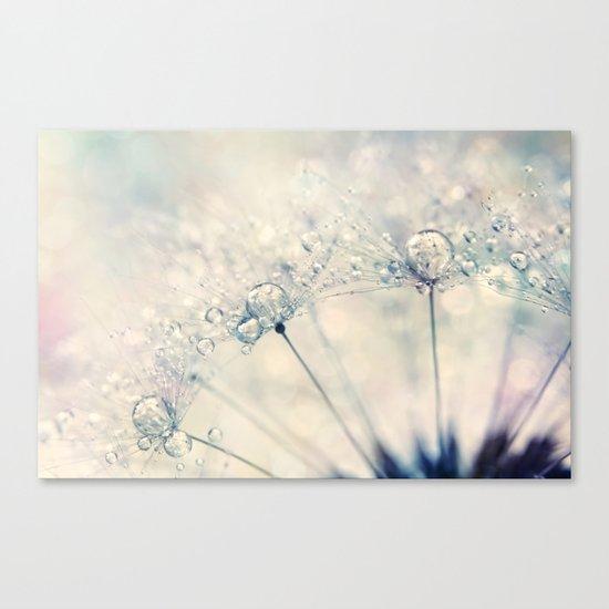 Dandy Drops Canvas Print