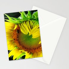 Sunflower Morning Stationery Cards