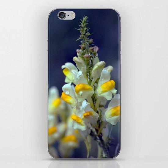 Toadflax flowers 5067 iPhone & iPod Skin