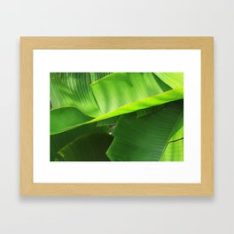 Green|Leaves. Framed Art Print